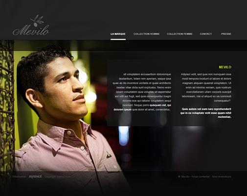 Webdesgin Mevilo
